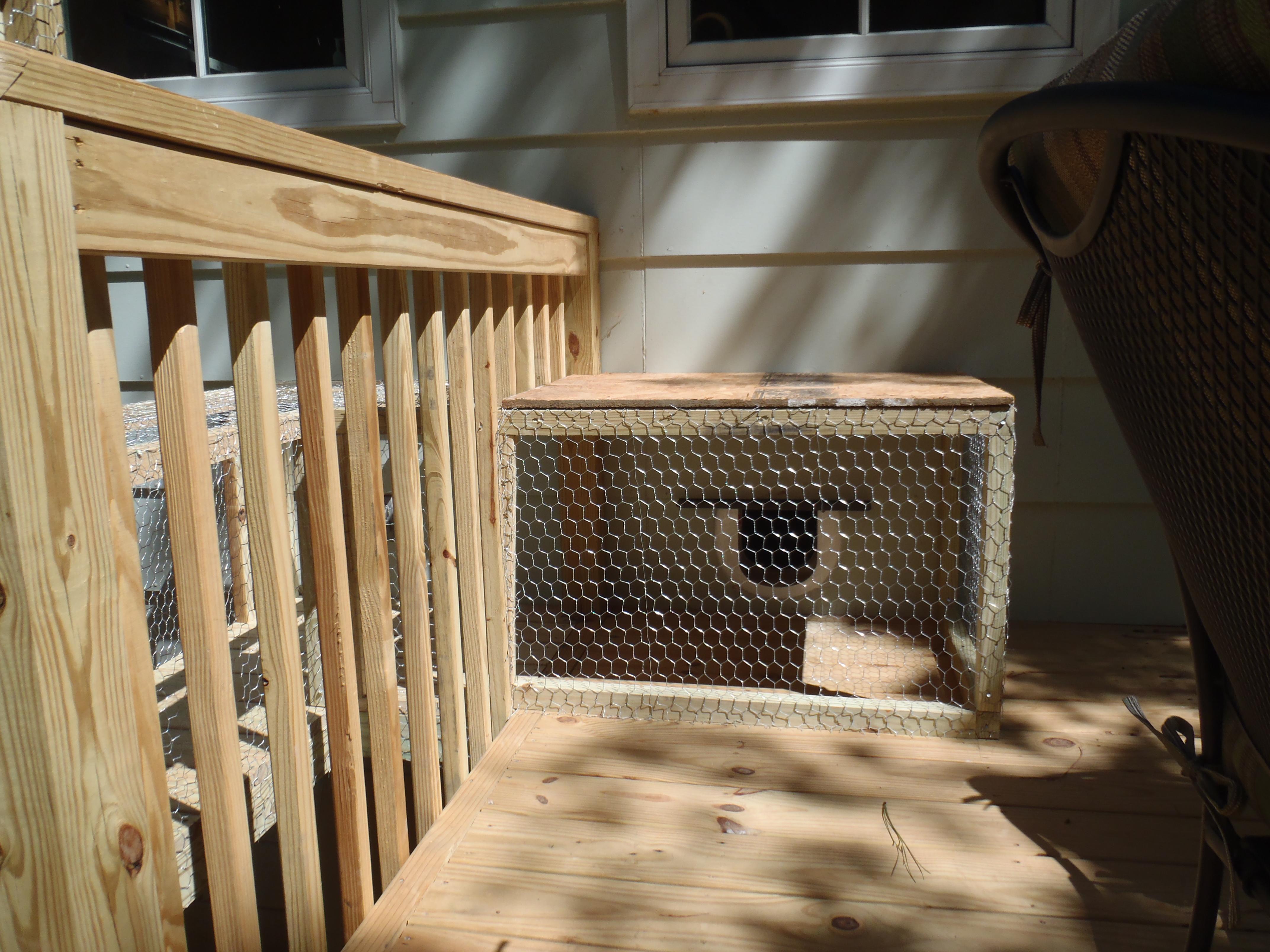 Cat door an tunnel for outdoor cat enclosure