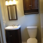 Homewood bathroom after!  With LED light fixtures, low flow faucets and toilet, and upcycled medicine cabinet!