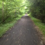 The Beautiful Virginia Creeper Trail