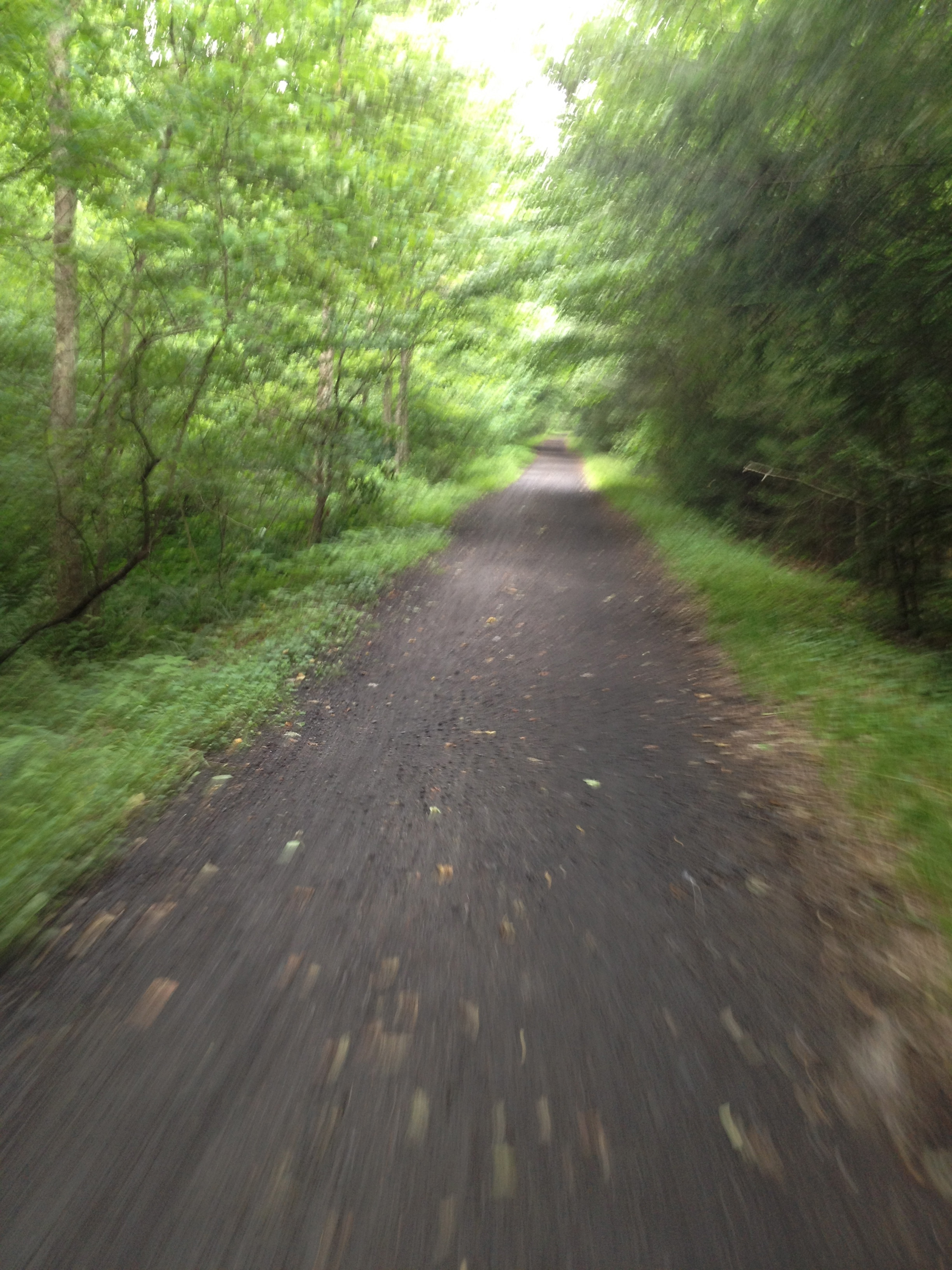 The Beautiful Virginia Creeper Trail
