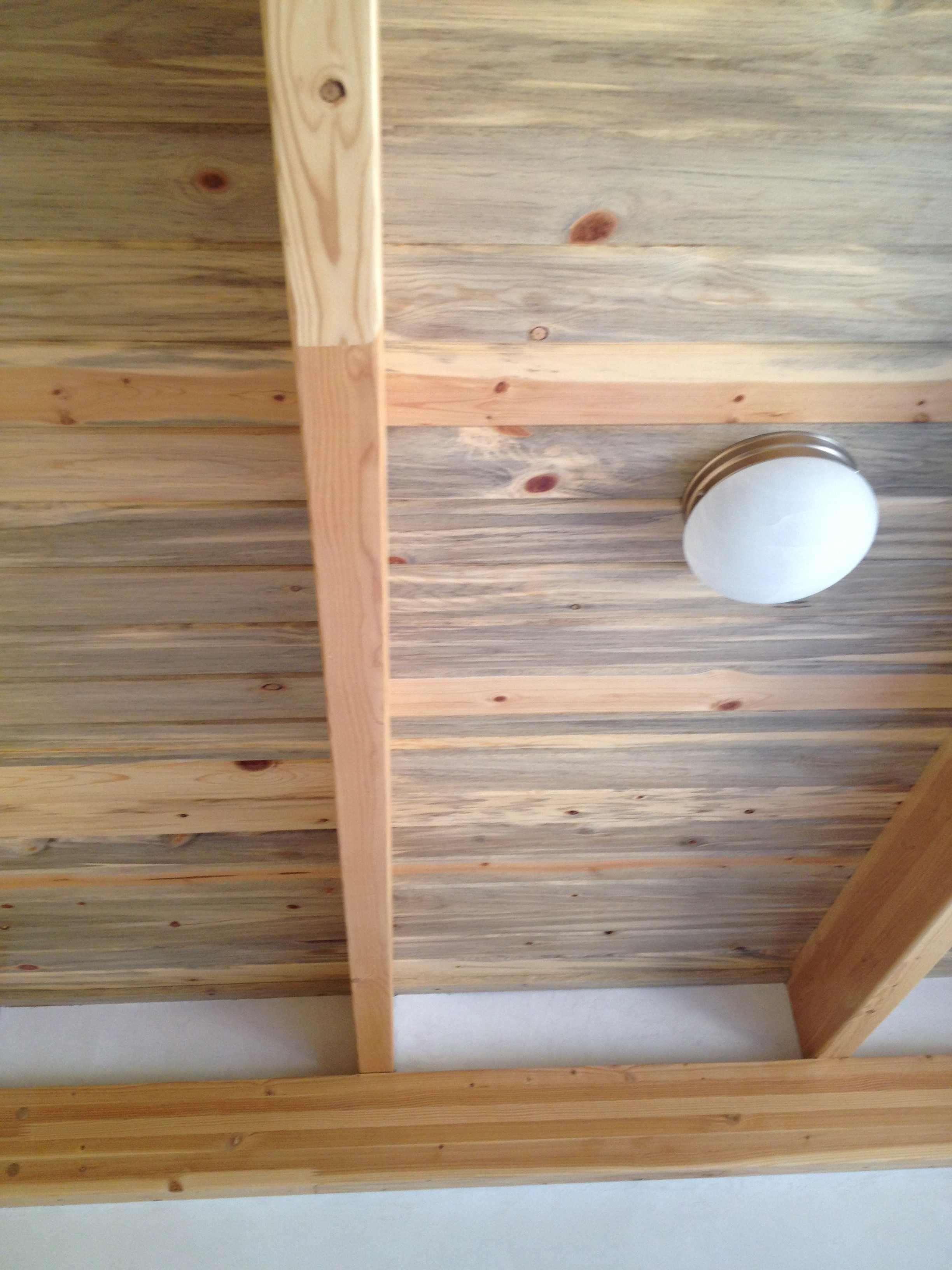 Ceiling made from Beetle kill wood in Boulder Passive House. Supposedly, the beetle kills the pine and then a fungus gets in the wood and creates the blueish color.